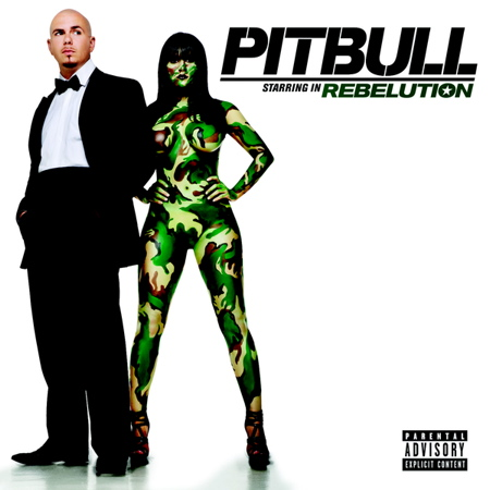 pitbull rebelution I Know You Want Me (Calle Ocho) OFFICIAL VIDEO