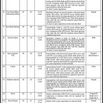 Government jobs in national regulatory body