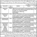 Lady Willingdon Hospital Lahore Jobs 2016 Application Form