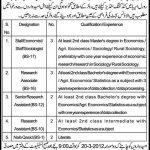 Punjab Vocational Training Council Punjab Lahore Jobs