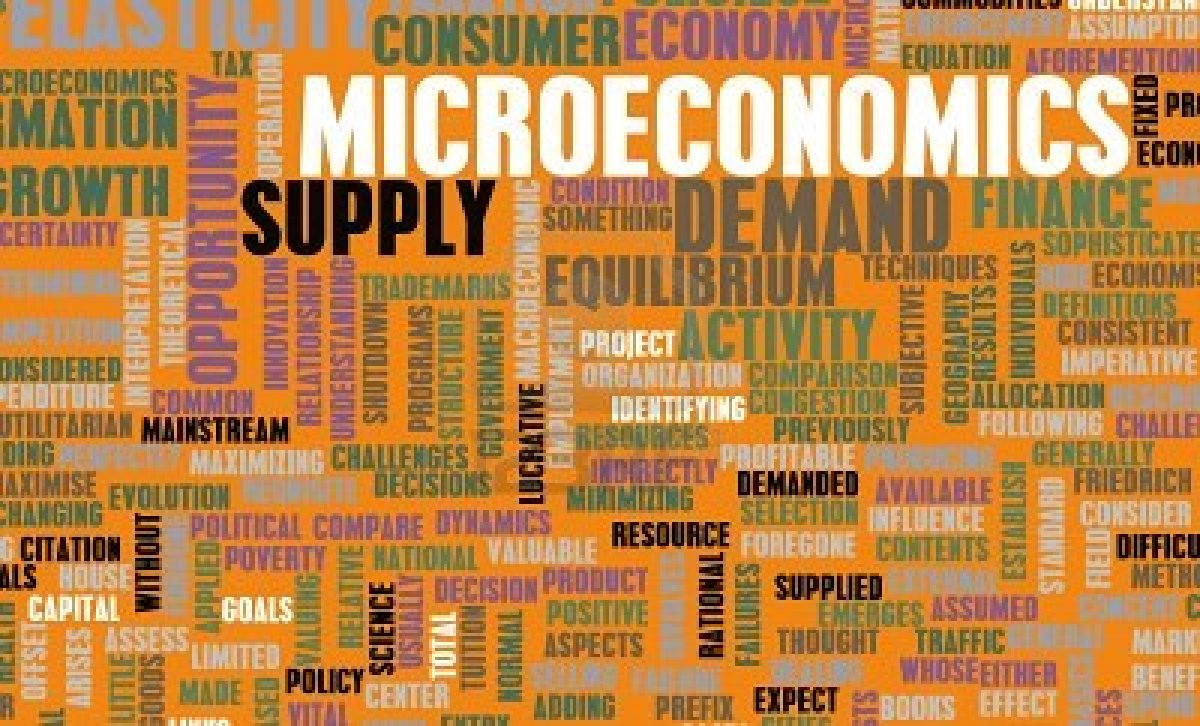 Microeconomics What Is Microeconomics?