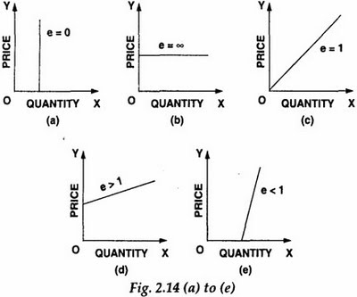 Types of Elasticity in Economics Types of Elasticity in Economics