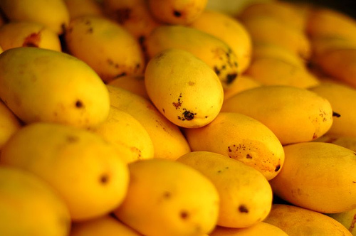 Health Benefits of Eating Mango Fruit And Juice