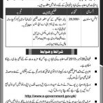 Ministry of Information Technology Islamabad Jobs 2016