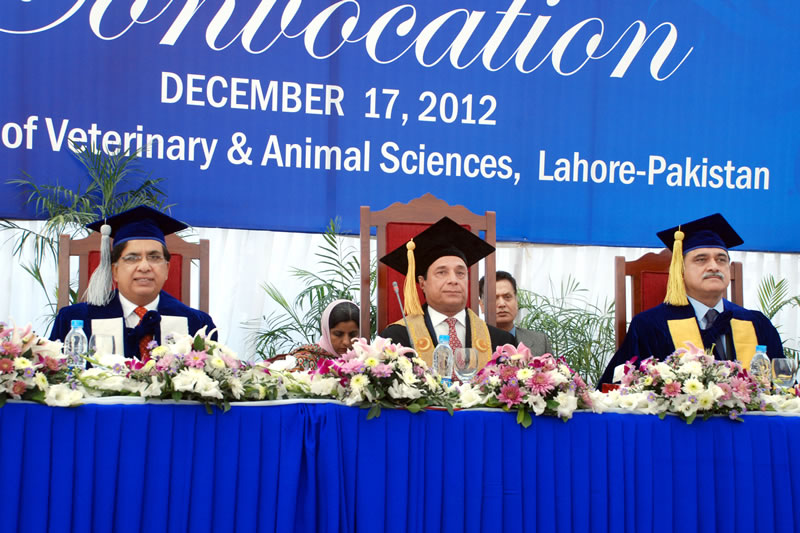 UVAS Convocation
