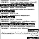 Jobs Opportunities in Sadiq Poultry Farm 2015