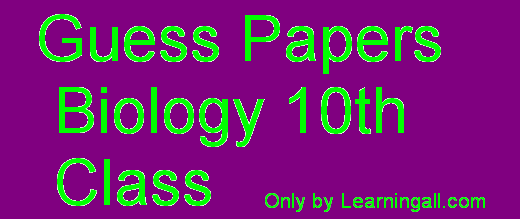 Guess Papers 10th Class 2013 The Guess Paper of 10th Class Biology Paper Pakistan