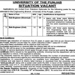 University of the Punjab Lahore Situation Vacant