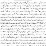 Pakistan is safe 150x150 Essay on the Importance of National Unity and Strength