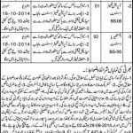 Jobs in Govt Syed Mitha Teaching Hospital Lahore