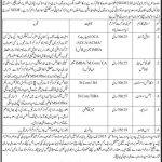 SEDF Government of Sindh Jobs 2015