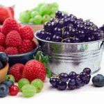 Foods that Increase Memory Power and Concentration