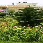Abbottabad University Science Technology Admission 2016 Test Merit List