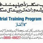 PSDF Course Industrial Training Program 2016 Punjab Skills Development Fund