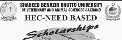 HEC Need Based Scholarship
