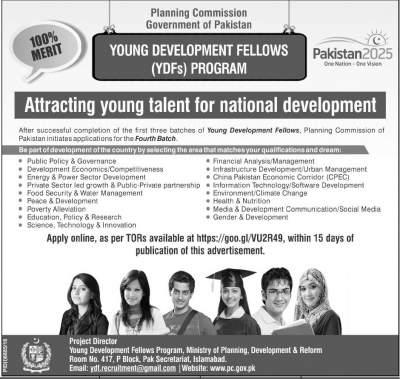 Young Development Fellows Program 2017 Apply Online Last Date