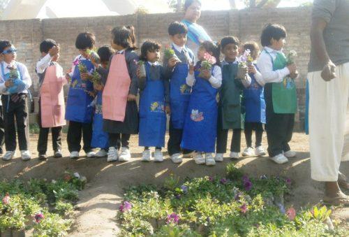 The city School Faisalabad