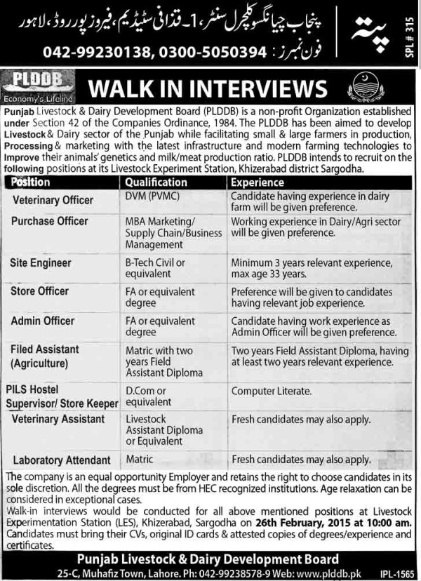 Punjab Livestock & Dairy Development Board Jobs in Express Paper