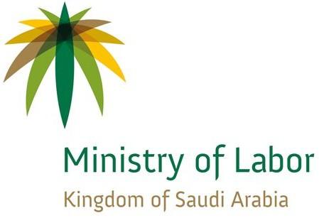 Saudi Arabia Iqama Status