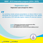 UCP internship program 2014