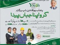 Shahbaz Sharif Punjab Youth Internship Program 2018