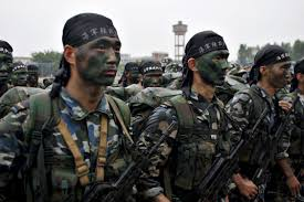 chinese-Army-in-2025