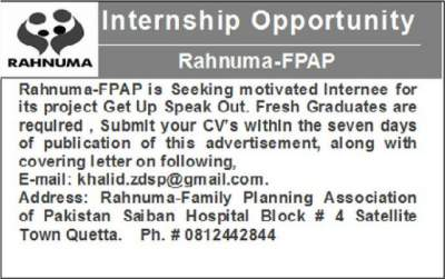 Rahnuma Internship Program