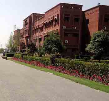 Comsats-University-Sahiwal-