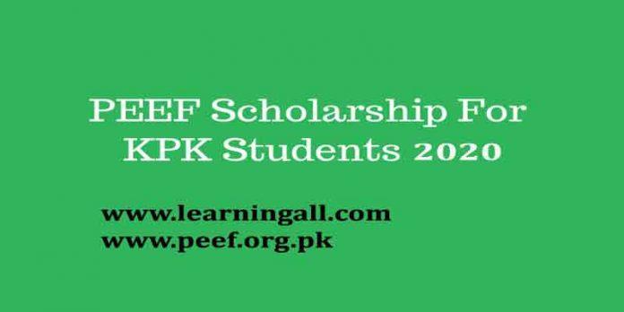 PEEF-KPK-scholarships