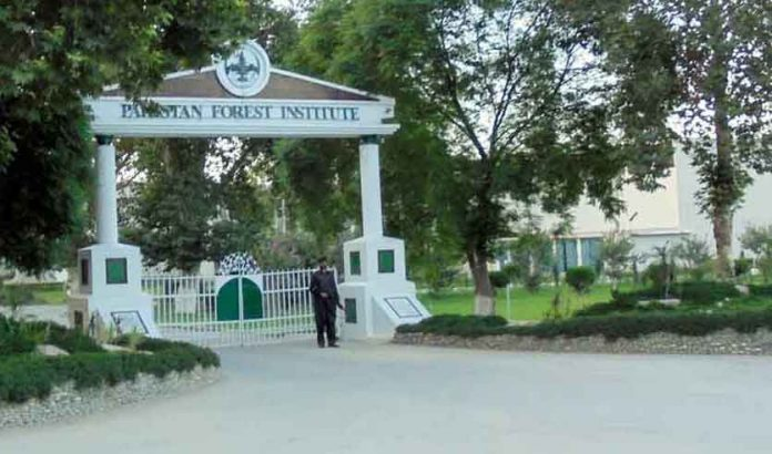Pakistan-Forest-Institute-Admissions