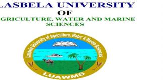 Civil-Engineer-Jobs-2020-in-Lasbela-University-LUAWMS-Balochistan