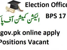 Election-Officer-Jobs-2020-ecp.gov_.pk_-265x198 Job Application Form Election Commission on part time, blank generic, free generic,