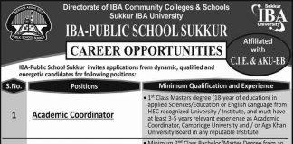 IBA-Public-school-Jobs-2020
