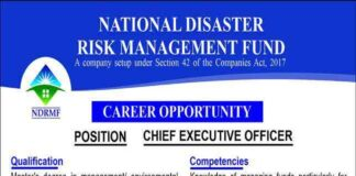 Chief-Executive-Officer-Jobs-2021