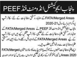 peef-scholarship-fata-2021